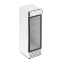 Холодильный шкаф RV400GL